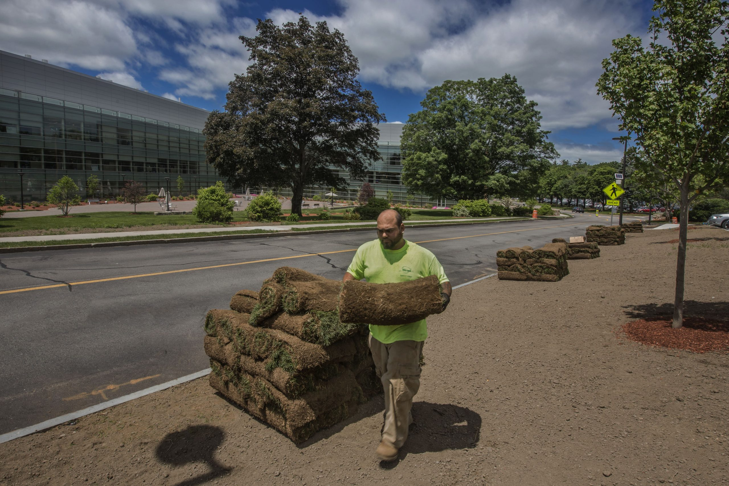 Piles of sod lining the street at a Greenscape job site.