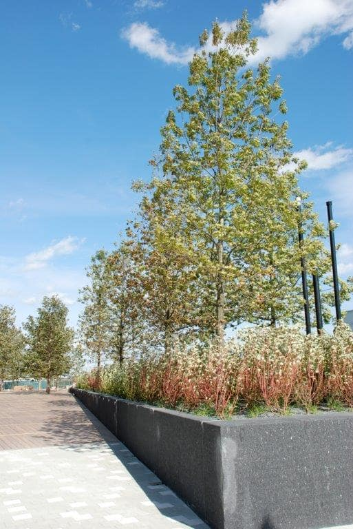 A retaining wall with trees and flowers planted inside.