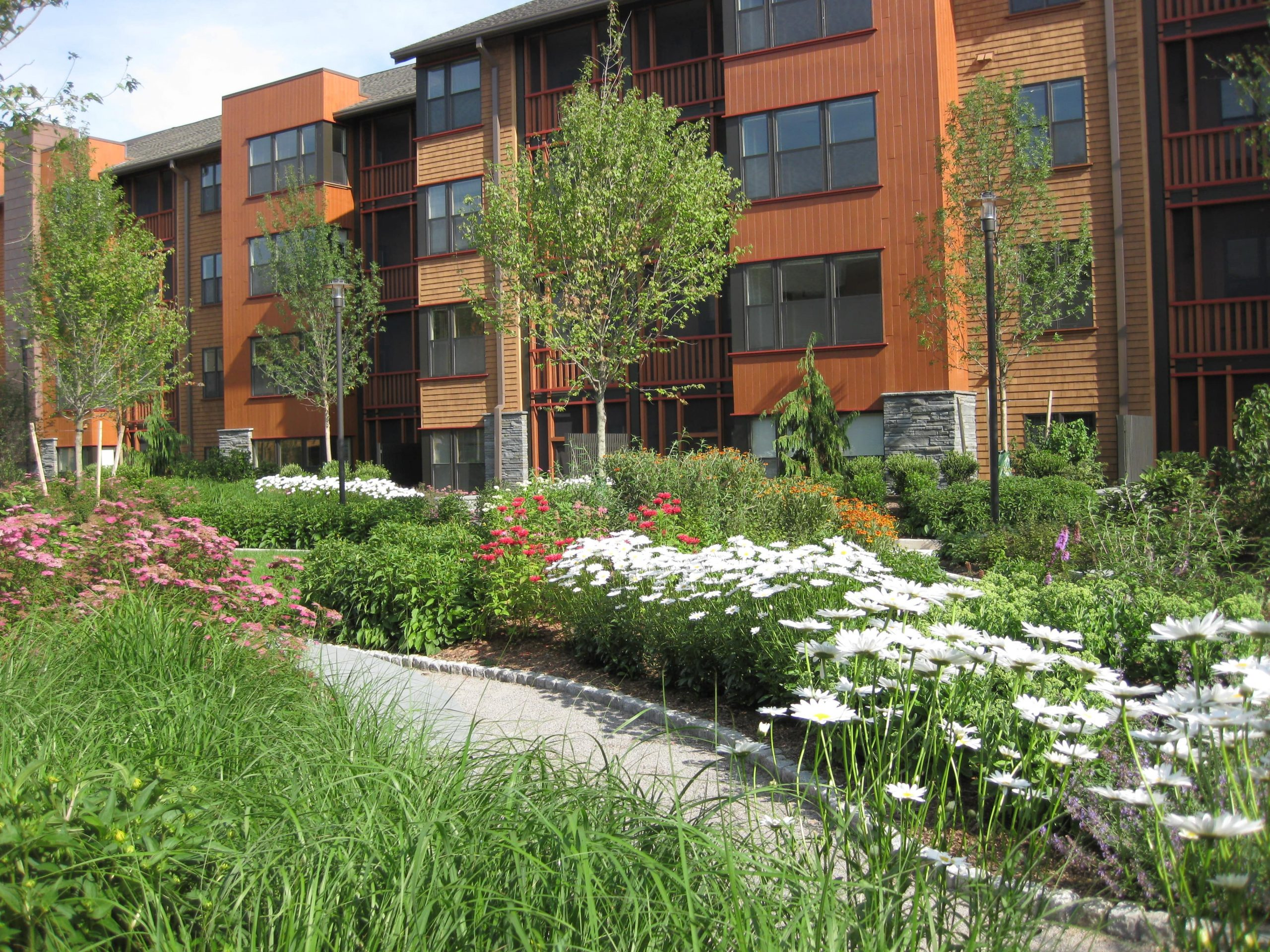 Fully landscaped walking path in a residential area with flowers and plants on either side.