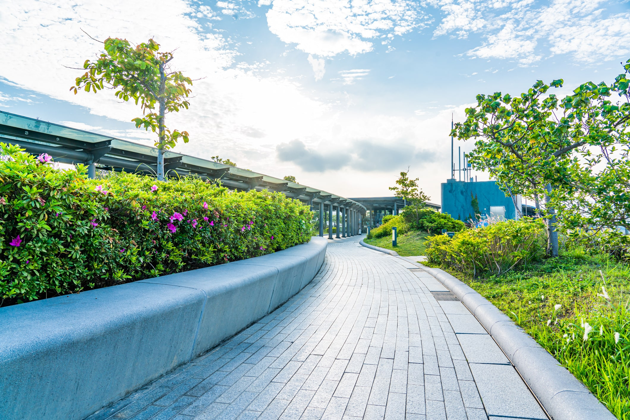 Walking path surrounded by flowers, other plants and trees.