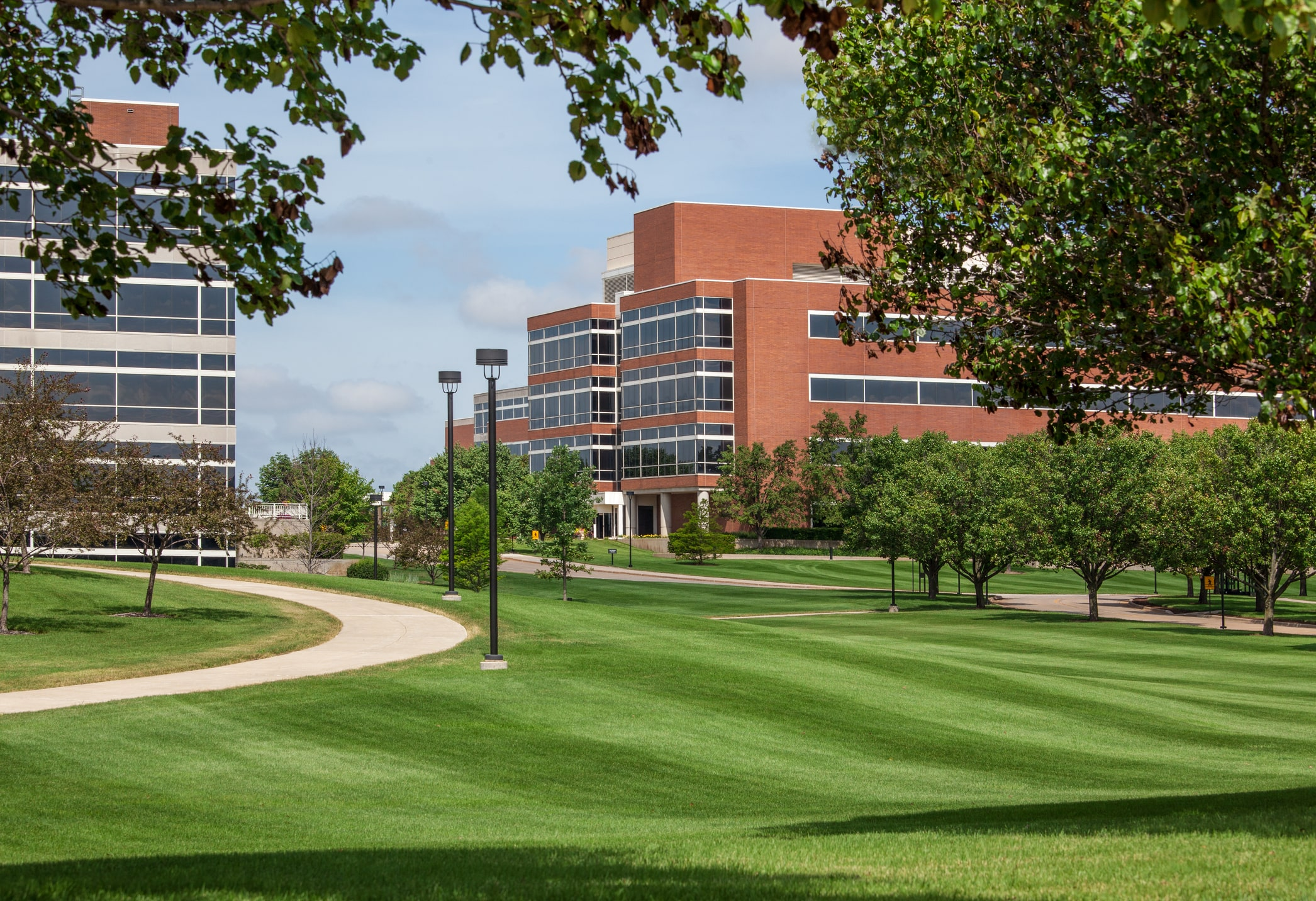 Example of a fully landscaped campus with trees and many walking paths.