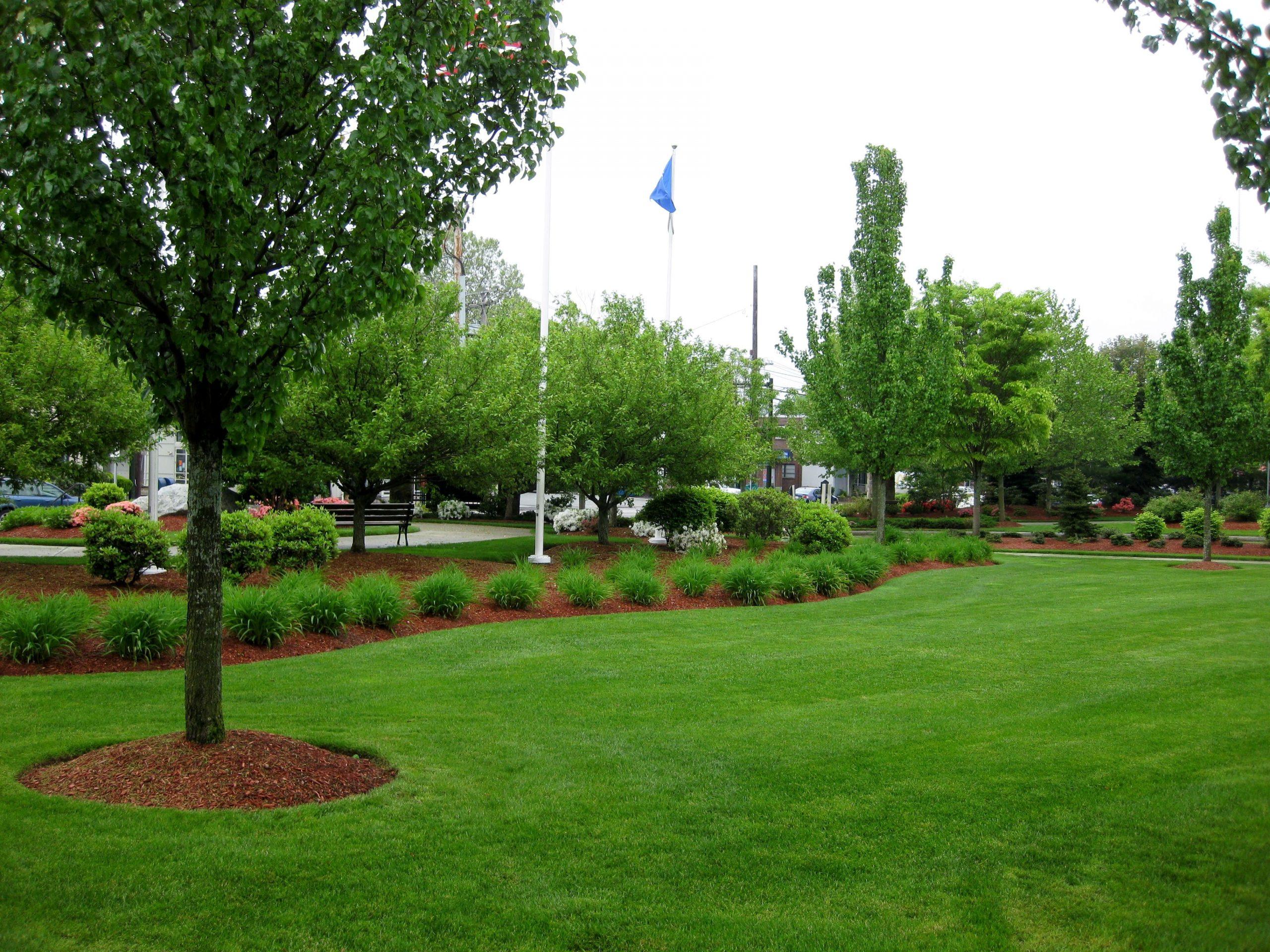 Some landscape maintenance done at Newton Commercial complex.