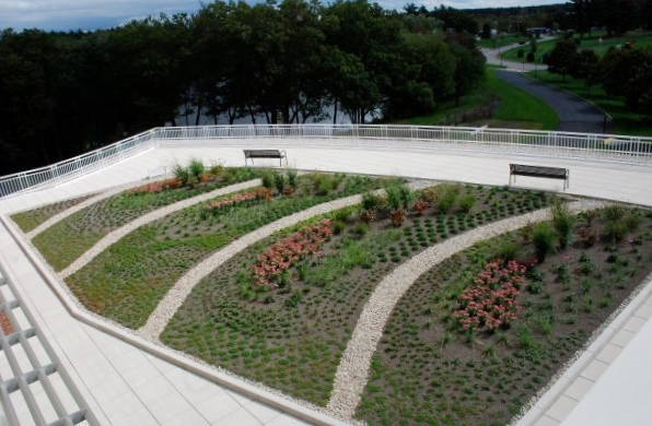 Aerial View of a Green Roof Installation