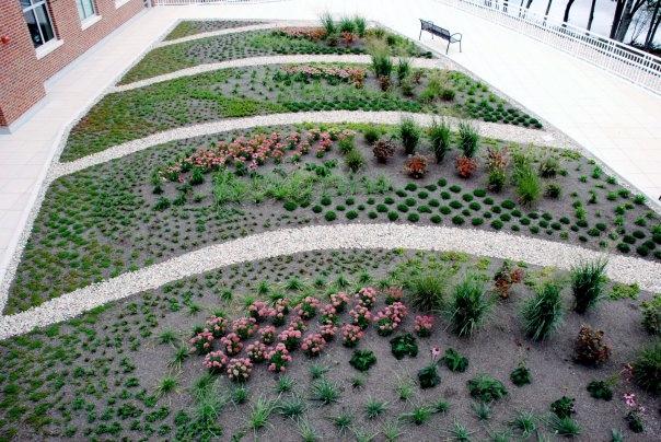 Aerial View of Garden Installation