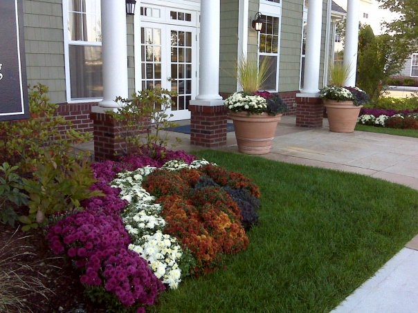 Entryway Flowers and Landscaping