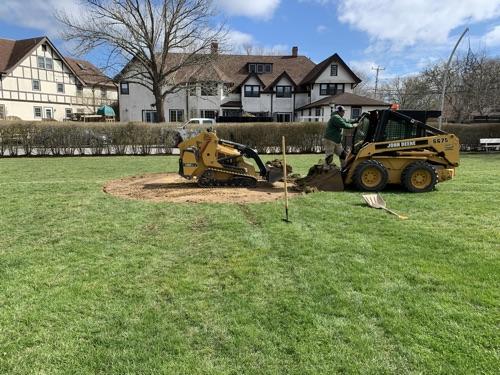 Spring Landscape Development