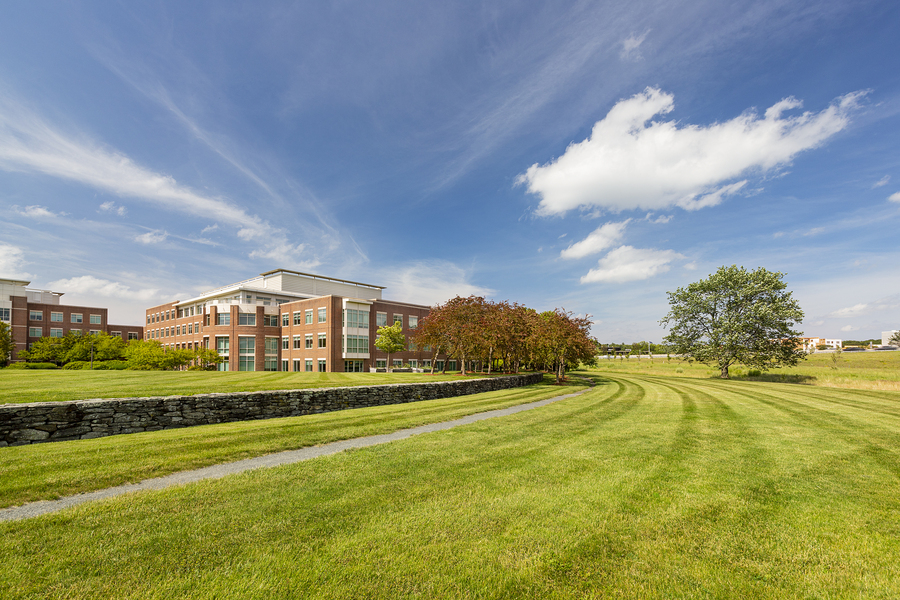 Corporate Lawn Maintenance at Worcester Rd. Offices